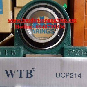 VÒNG BI WTB,BẠC ĐẠN WTB,GỐI ĐỠ WTB,VÒNG BI UCP313,BẠC ĐẠN UCP313,GỐI ĐỠ UCP313,VÒNG BI P313,BẠC ĐẠN P313,GỐI ĐỠ P313